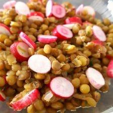 Salade de lentilles aux radis roses