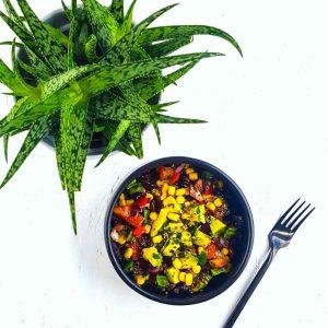 Salade tex-mex au quinoa rouge et avocat - la cerise sur le maillot