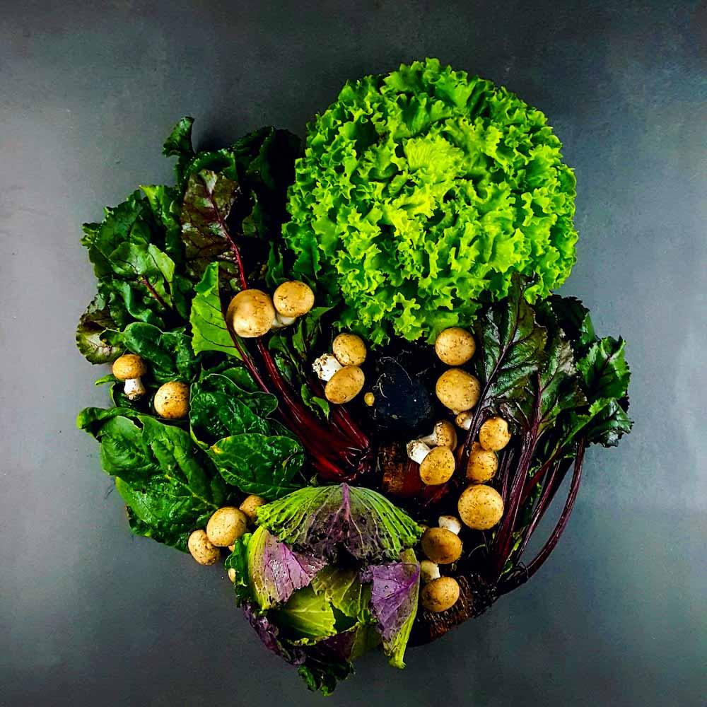 Je mange quoi en mars - fruits, légumes et produits de saison - la cerise sur le maillot